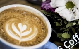 KTS Coffee shop