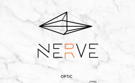 Nerveoptic