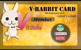 V-Rabbit Card