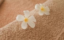 Kaede Massage